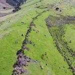 Drone video of Kaikoura Earthquake