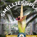 Kids react to smelliest plant
